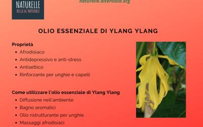 Olio essenziale di Ylang Ylang proprietà benefiche e usi